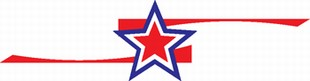 stars and stripes decal 9
