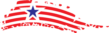 stars and stripes decal 273