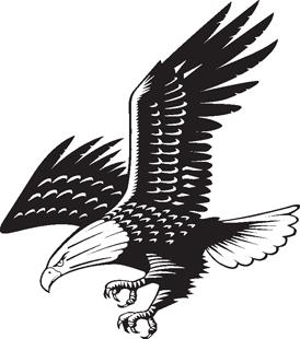 Eagle decal 4