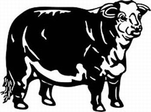 hareford cow decal