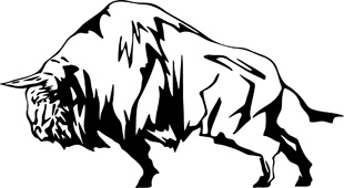 Flaming Buffalo decal