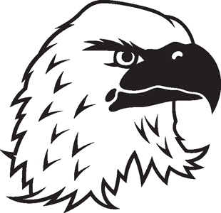 Eagle 11 decal