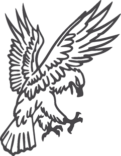 Eagle 12 decal