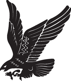Eagle 15 decal