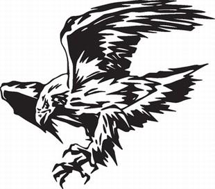 Eagle_11