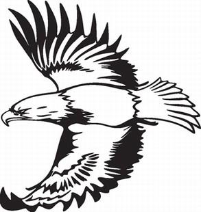 Eagle_13