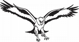 Eagle_15