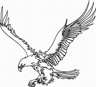Eagle_5