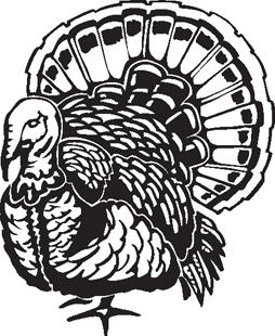 thanksgiving turkey decal