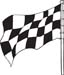 Checkered Flags 55