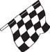 Checkered Flags 45