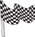 Checkered Flags 50