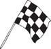Checkered Flags 48