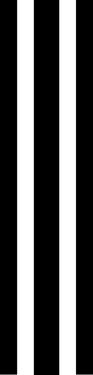 """11"""" triple rally stripe"""