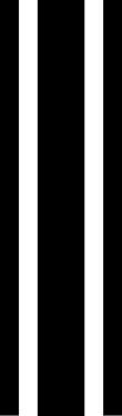 """13"""" triple rally stripe"""