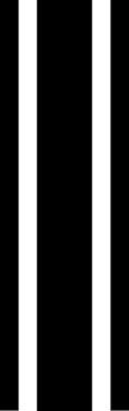 """14"""" triple rally stripe"""