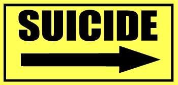"""Suicide 12""""x5.75"""" Vinyl decals"""